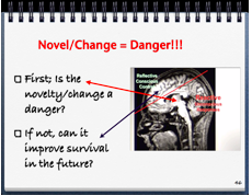 Novelty/Change=Danger