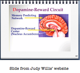 Dopamine-reward circuit